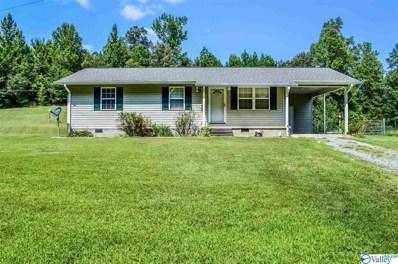 2040 County Road 89, Gaylesville, AL 35973 - #: 1149805