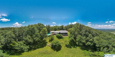 18905 County Road 89, Mentone, AL 35984 - MLS#: 1150036