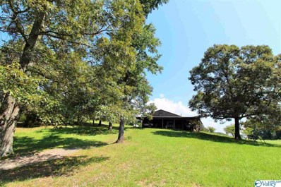 501 Houston Loop Road, Fort Payne, AL 35968 - MLS#: 1150322