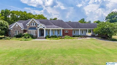 3801 Greenhill Blvd, Fort Payne, AL 35967 - MLS#: 1150800