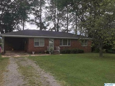 24870 Airport Road, Athens, AL 35614 - MLS#: 1151397