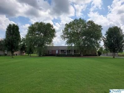 565 Upper River Road E, Decatur, AL 35603 - MLS#: 1151812