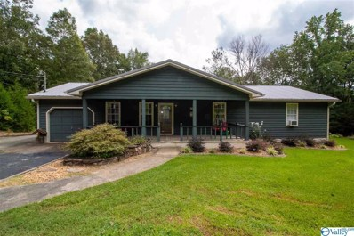 9134 Sulpher Springs Road, Valley Head, AL 35989 - MLS#: 1152108