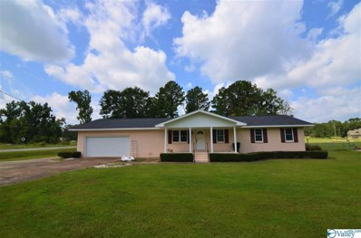 1401 Cove Creek Drive, Glencoe, AL 35905 - MLS#: 1152220
