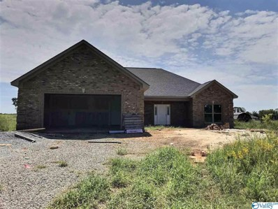 9962 Snake Road, Athens, AL 35611 - MLS#: 1152266