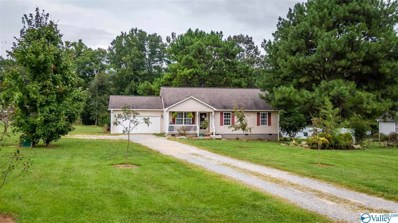 175 County Road 295, Fort Payne, AL 35967 - #: 1152817