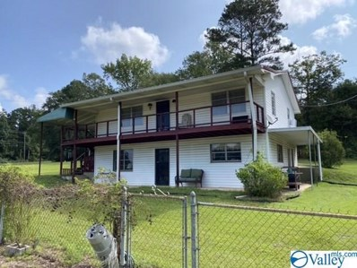 4305 Us Highway 278, Hokes Bluff, AL 35903 - MLS#: 1153088
