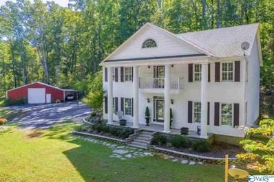 480 Mountain Oak Trail, Somerville, AL 35670 - MLS#: 1153500