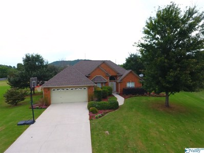 105 Diamond Back Lane, Madison, AL 35757 - MLS#: 1153689