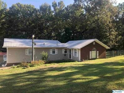 192 Little Lones Road, Huntsville, AL 35811 - #: 1154565