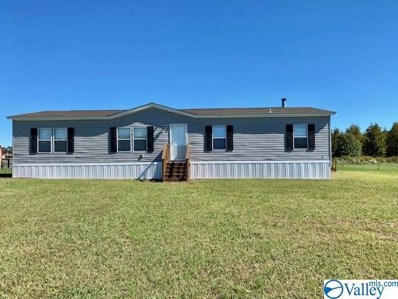 497 Golightly Spring Road, Toney, AL 35773 - MLS#: 1154990