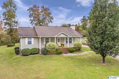 2550 Country Road, Southside, AL 35907 - MLS#: 1156388
