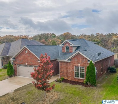 15008 Lakeside Trail, Huntsville, AL 35803 - MLS#: 1156616