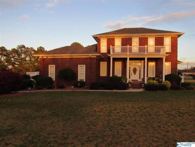 16 Mitchem Lane, Albertville, AL 35951 - MLS#: 1156891
