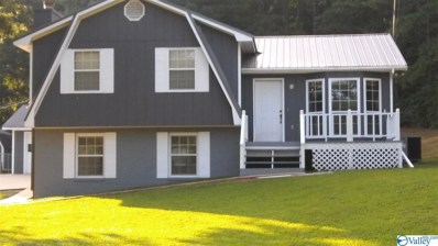 1608 Green Valley Road, Glencoe, AL 35905 - MLS#: 1157158