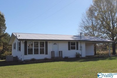 19177 Alabama Highway 75, Henagar, AL 35978 - MLS#: 1157215