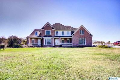 495 County Road 301, Trinity, AL 35673 - MLS#: 1770535