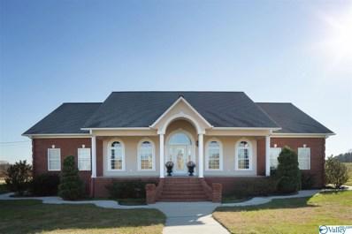 468 County Road 748, Ider, AL 35981 - MLS#: 1770838