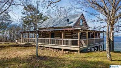 25699 County Road 89, Mentone, AL 35984 - MLS#: 1772318
