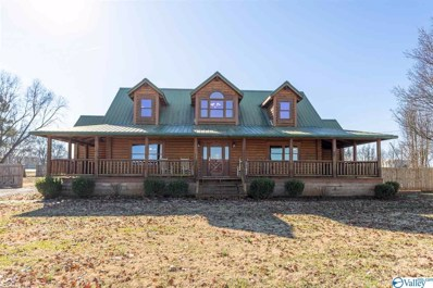 26848 Old Hwy 20, Madison, AL 35756 - MLS#: 1772810