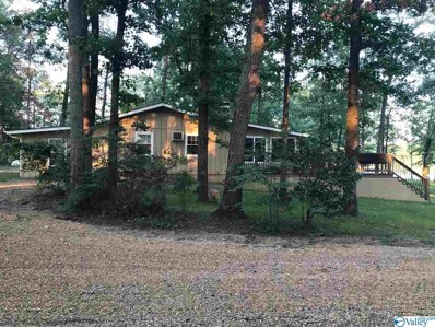 385 County Road 907, Cedar Bluff, AL 35959 - MLS#: 1774117
