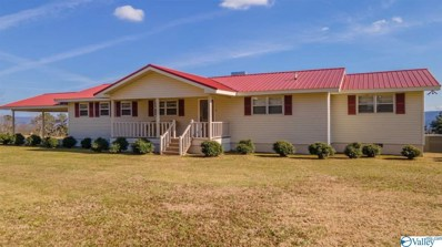 775 Mountain View Drive, Fort Payne, AL 35968 - MLS#: 1774393