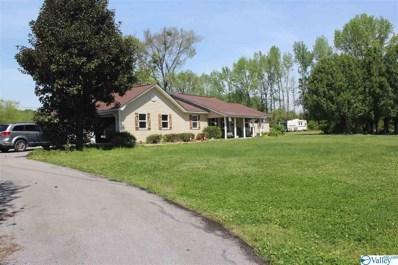 51 Collins Place Pvt Drive, Danville, AL 35619 - MLS#: 1778796