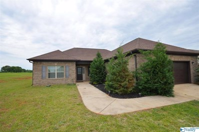1062 Murphy Hill Road, Toney, AL 35773 - MLS#: 1780329