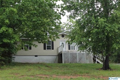 63 Circle Drive, Fort Payne, AL 35967 - MLS#: 1780350