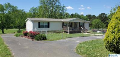 2590 County Road 44, Leesburg, AL 35983 - MLS#: 1780718