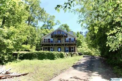 735 County Road 592, Leesburg, AL 35983 - MLS#: 1781539