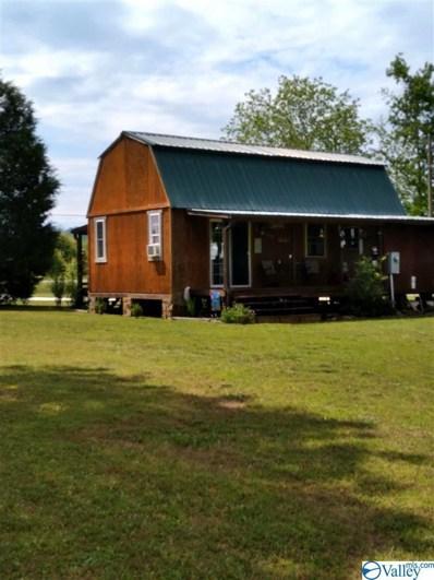 165 County Road 146, Leesburg, AL 35983 - MLS#: 1781682