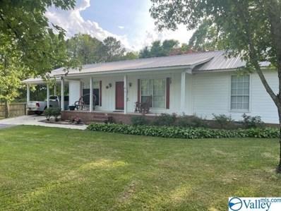 61 Mayport Road, Guntersville, AL 35976 - MLS#: 1782601