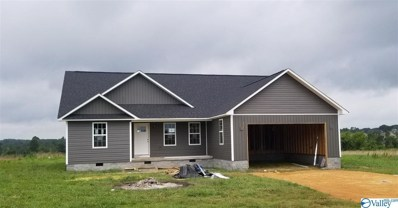 488 Scott Avenue, Rainsville, AL 35986 - #: 1782671