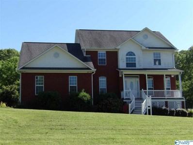 3353 Creek Path Road, Guntersville, AL 35976 - #: 1783115