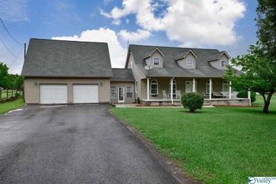 120 County Road 1219, Falkville, AL 35622 - MLS#: 1783362