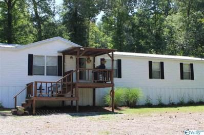 507 Holiday Shores Drive, Scottsboro, AL 35769 - MLS#: 1783654