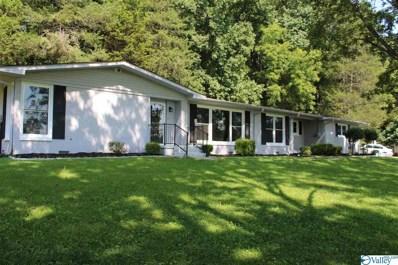 11017 Mount Charron Road, Huntsville, AL 35810 - MLS#: 1783884