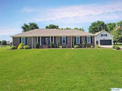 105 Indian Trace Circle, Meridianville, AL 35759 - MLS#: 1784382
