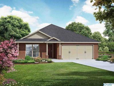 3202 Jordan Farm Circle, Huntsville, AL 35811 - MLS#: 1784969
