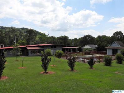 3408 Colonial Drive, Guntersville, AL 35976 - MLS#: 1785442