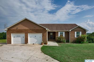 910 Copeland Creek Road, Blountsville, AL 35013 - MLS#: 1787062