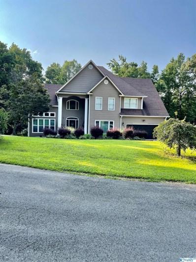124 Bluff View Drive, Scottsboro, AL 35769 - MLS#: 1787722