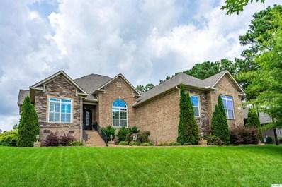 9 Bluff View Drive SE, Huntsville, AL 35803 - MLS#: 1788395