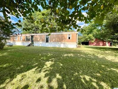 233 Jones Road, Rainsville, AL 35986 - MLS#: 1790235