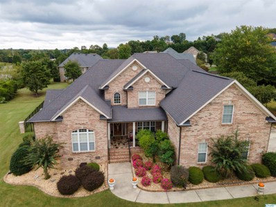 118 Cliftmere Place, Madison, AL 35758 - MLS#: 1792713