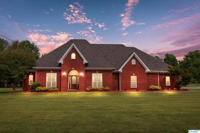 14 Amber Drive, Decatur, AL 35603 - MLS#: 1792821