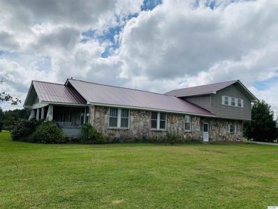 1467 County Road 23, Geraldine, AL 35974 - MLS#: 1793044