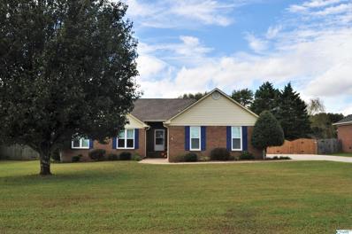 326 Homer Nance Road, Huntsville, AL 35811 - MLS#: 1793296