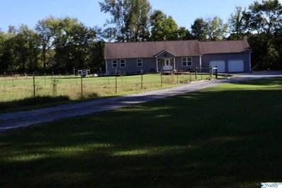 97 McGlathery Lane, Falkville, AL 35622 - MLS#: 1793334